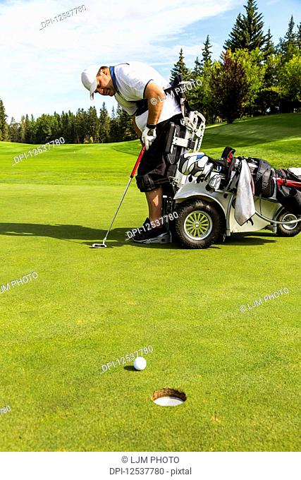 A physically disabled golfer putting a ball on a golf green and using a specialized golf assistance motorized hydraulic wheelchair; Edmonton, Alberta, Canada