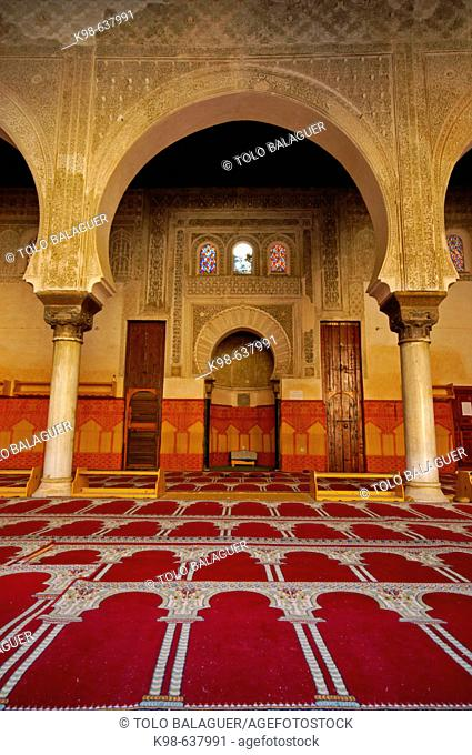 Oratory of the Bou Inania medersa (S.XIV). Fez. Morocco