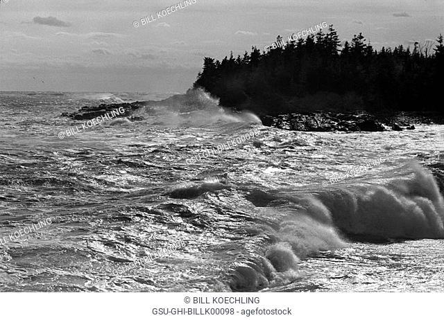 Rough Coastal Water, Maine, USA