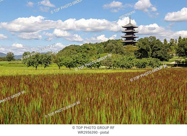 Five story pagoda at Bichukokubun ji Temple in Okayama, Japan