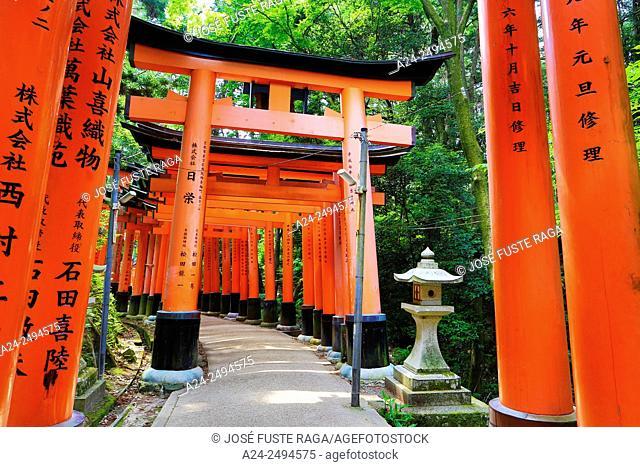 Japan, Kyoto City, Fushimi-Inari Taisha Shrine, Toriies