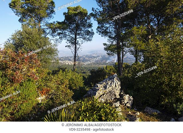 Nature landscape. Dawn in the natural spaces of Coin. Valle del Guadalhorce. Malaga province, Andalusia. Spain Europe