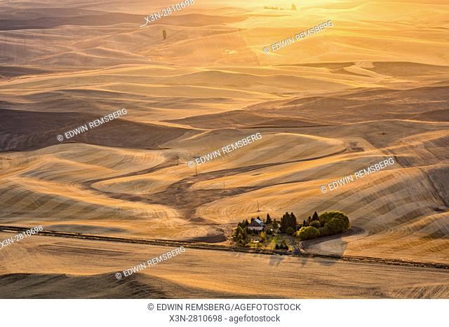 Agriculture in the Washington State