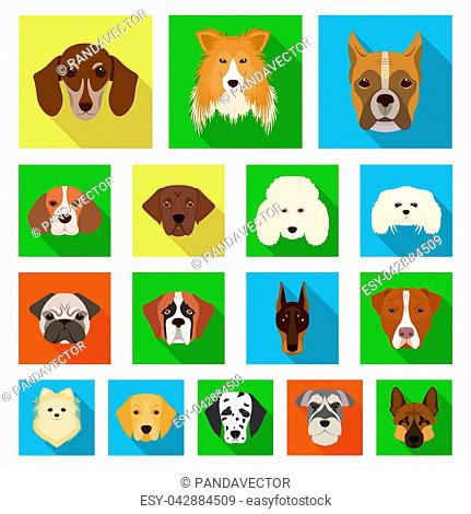 Dog breeds flat icons in set collection for design.Muzzle of a dog bitmap symbol stock illustration