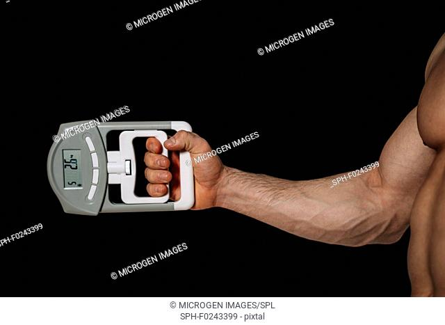 Measuring grip strength with dynamometer
