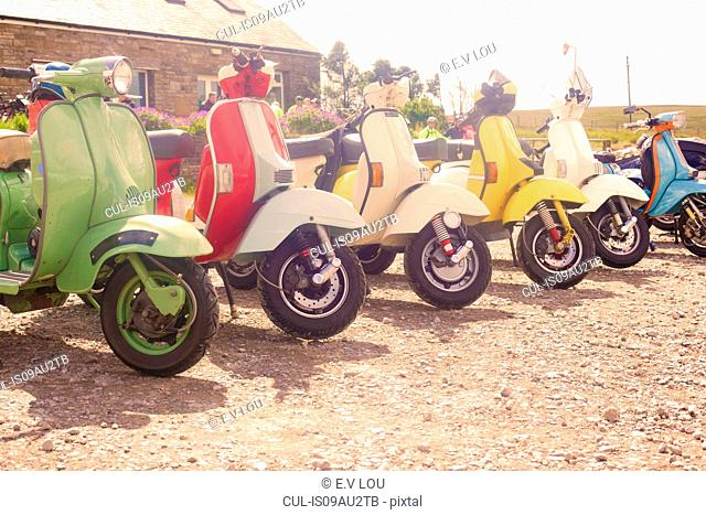 Colourful scooters parked in a row