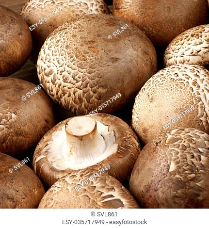 Fresh Raw Organic Portobello Mushrooms Stock Photos And Images Agefotostock