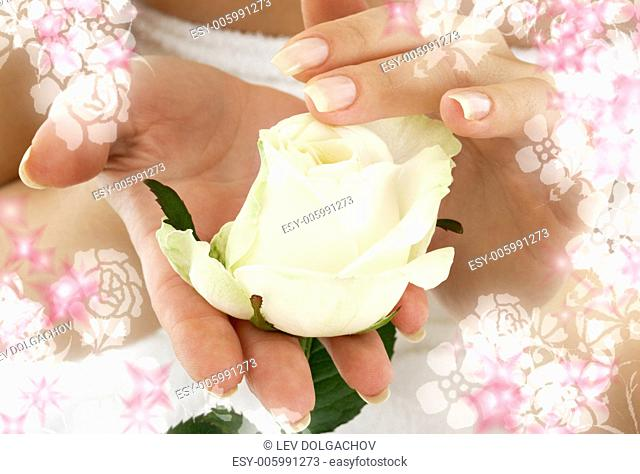 beautiful woman hands with rosebud surrounded by rendered flowers