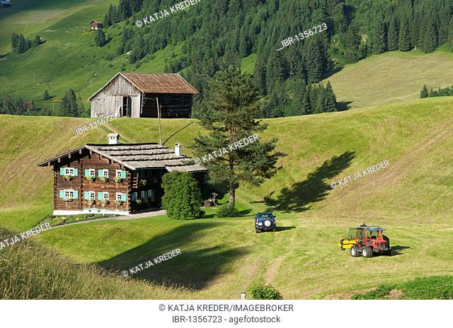 Hay harvest in Hirschegg in the Kleinwalsertal valley, Allgaeu, Vorarlberg, Austria, Europe