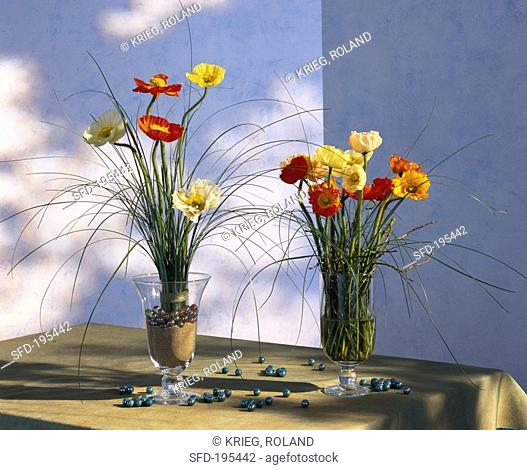 Anemones in glasses of sand and glass beads