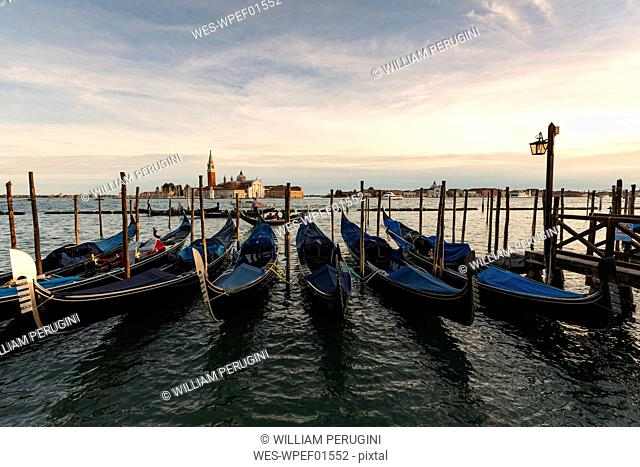View to San Giorgio Maggiore with row of gondolas in the foreground in the evening, Venice, Italy