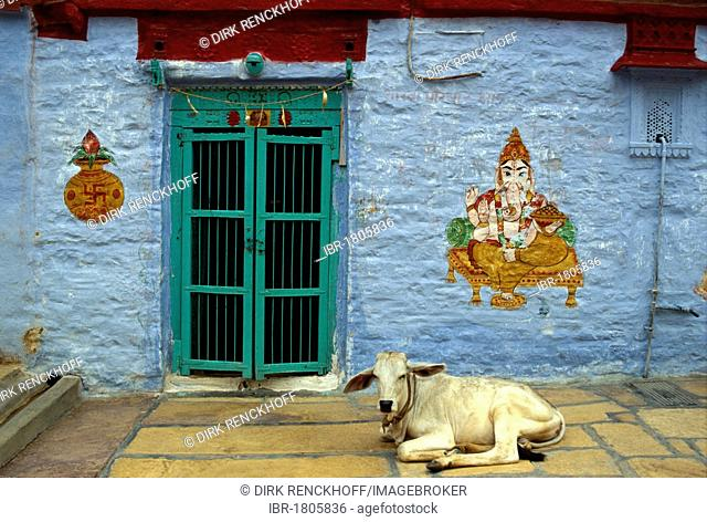 Cow in front of a Ganesha mural, Jaisalmer, Rajasthan, India, Asia
