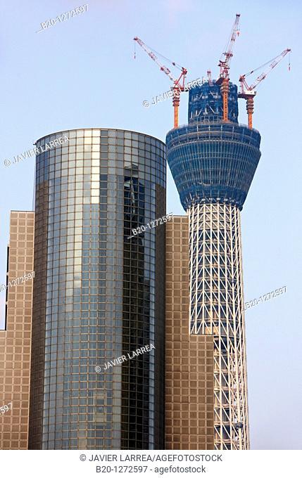 Sumida City Hall and Tokyo Sky Tree under construction, Asakusa, Tokyo, Japan