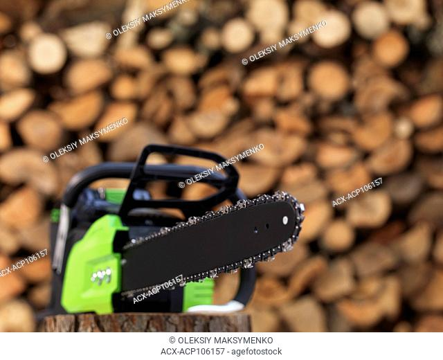 Electric Cordless battery powered chainsaw in front of stacked firewood in the background