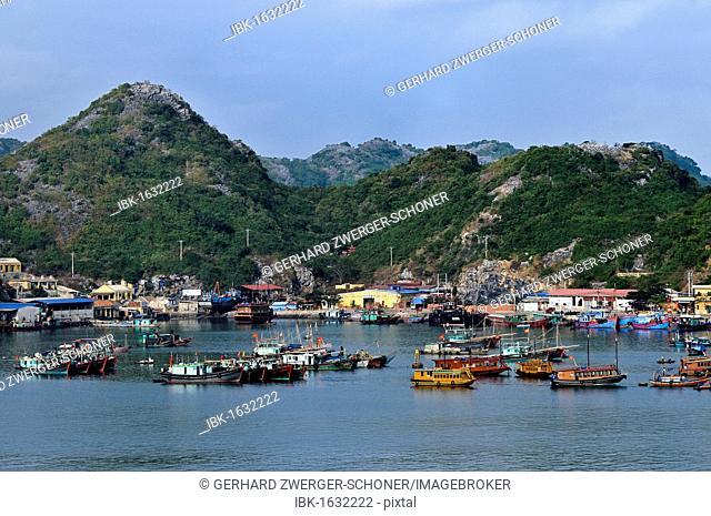 Harbour of Cat Ba, Halong Bay, Vietnam, Southeast Asia