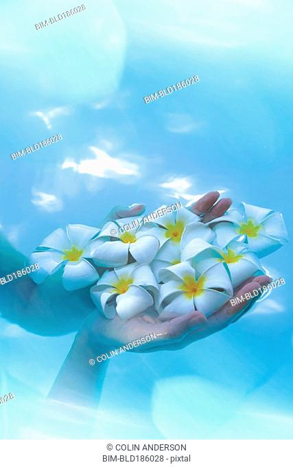 Pacific Islander woman holding flowers in pool