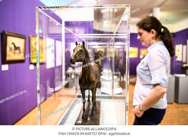 """26 June 2019, Lower Saxony, Verden: Christine Rüppell, scientific director of the German Horse Museum in Verden, is looking at the new special exhibition """"""""The..."""