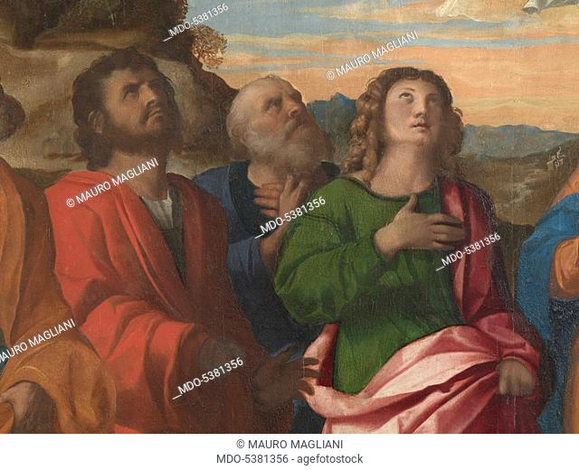 Assumption of Mary (Assunzione della Vergine), by Jacomo Nigretti de Lavalle known as Palma Vecchio, 1512, 16th Century, oil on board