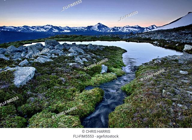 Alpine Meadow with Alpine Lake near the Coast Mountains of British Columbia