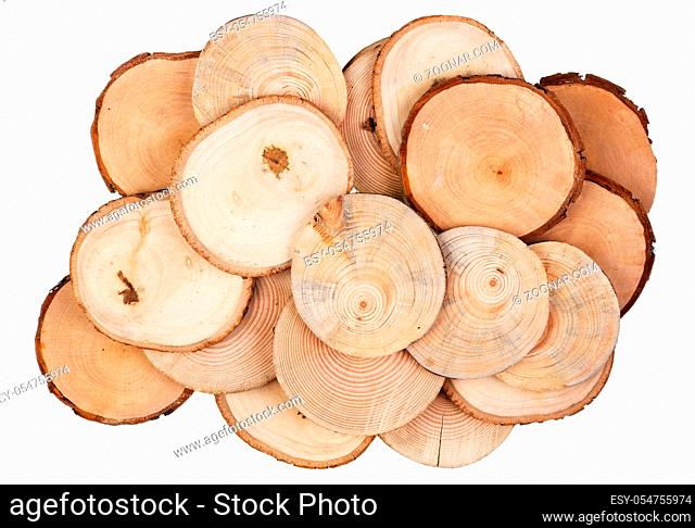 Round cuts and saw cuts of various species of garden wood - birch, apple, pear and pine. Isolated on white