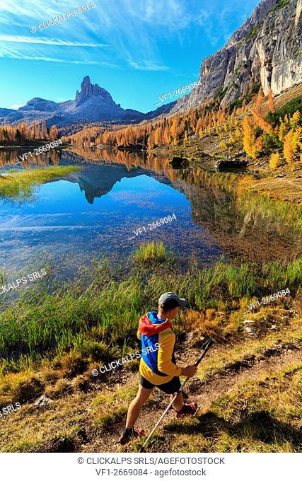 Becco di Mezzodi in the Federa lake, Dolomites, Trentino Alto Adige Italy Europe