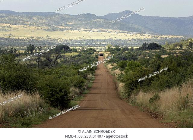 Dirt road passing through a landscape, Pilanesberg Park, North West Province, South Africa