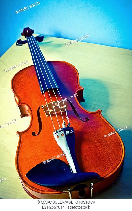 Violin, musical instrument, music