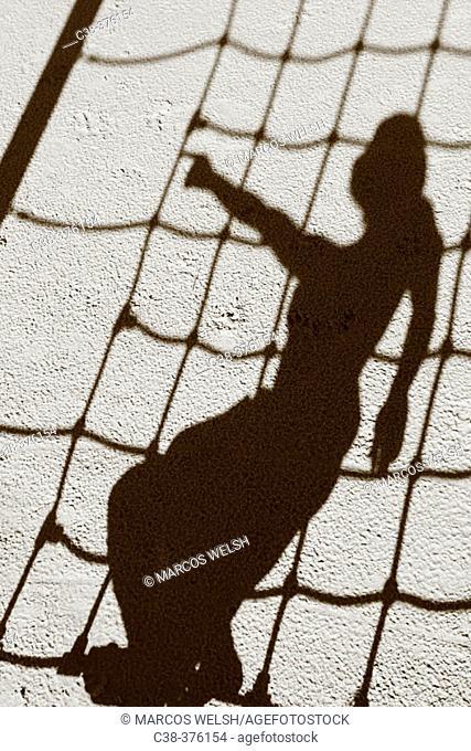 shadow net