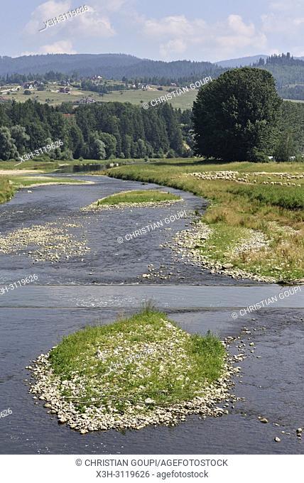 riviere Dunajec a Nowy Targ, Province Malopolska (Petite Pologne), Pologne, Europe Centrale/Dunajec river at Nowy Targ, Malopolska Province (Lesser Poland)