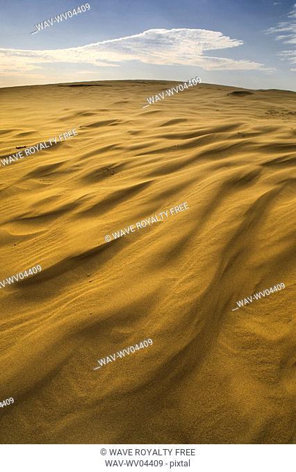 Great Sandhills, Saskatchewan, Canada