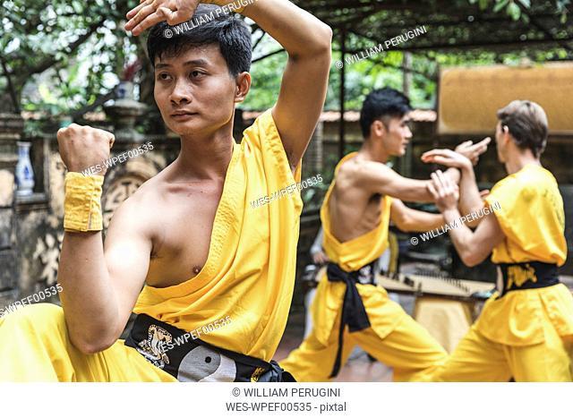 Vietnam, Hanoi, man exercising Kung Fu