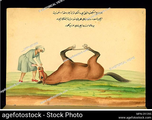 Healing a Horse Suffering from Colic with Old Wine and Olive Oil - Ahmed 'Ata Tayyarzade (1801–1877) Walters manuscript W.661, Walters Art Museum