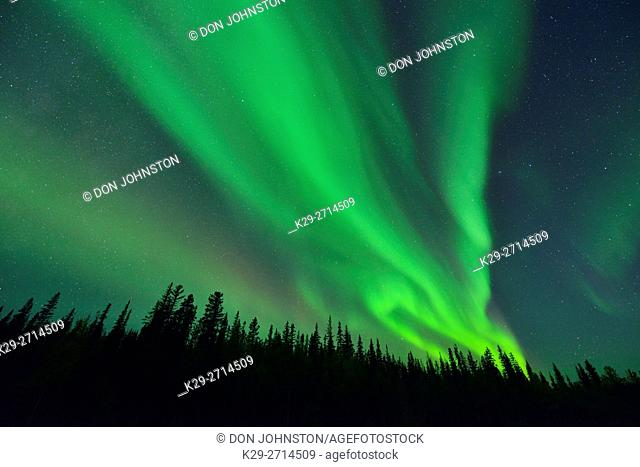 Aurora borealis (northern lights) in the night sky over the MacKenzie River with the Deh Cho Bridge, Fort Providence, Northwest Territories, Canada