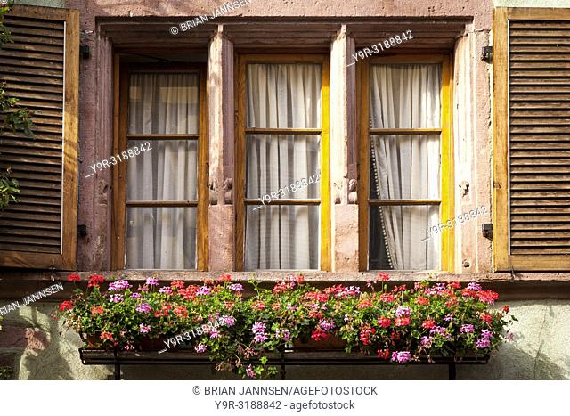 Early morning sunlight on shutters and flower box in Riquewihr, along the Wine Route, Alsace Haut-Rhin France