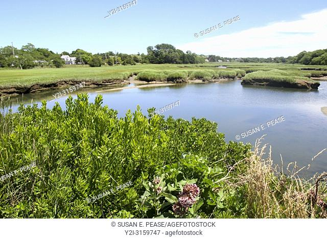 Wetlands, Barnstable, Cape Cod, Massachusetts, United States