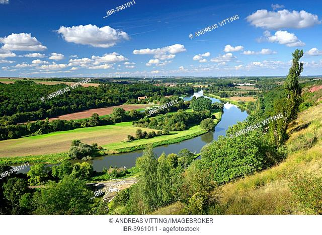 Saale Valley, Lower Saale Valley nature reserve, near Rothenburg, Saxony-Anhalt, Germany