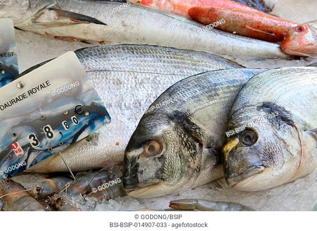 Fresh fish on a makert. Daurade Royale
