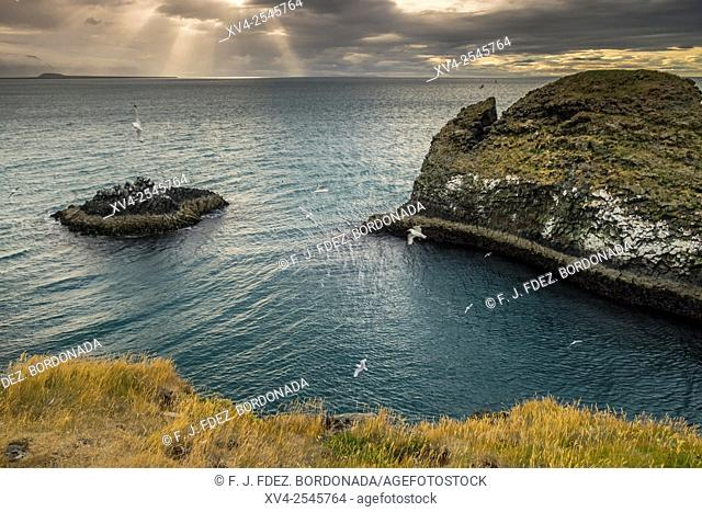 Arnarstapi, Snaefellsnes peninsula, West Iceland