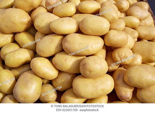 Potatoes background vegetables texture in outdoor market