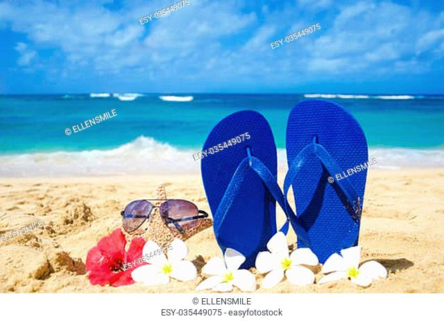 1330f18fcf418e Flip flops and starfish with sunglasses with tropical flowers on sandy beach  in Hawaii