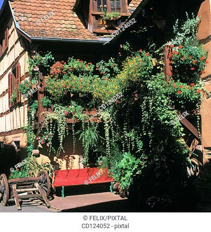 Ribeauville. Alsatian Wine Road. France