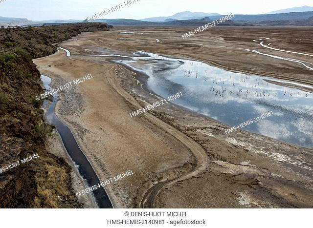 Kenya, lake Magadi, Little Magadi, lesser flamingoes (Phoeniconaias minor), aerial view