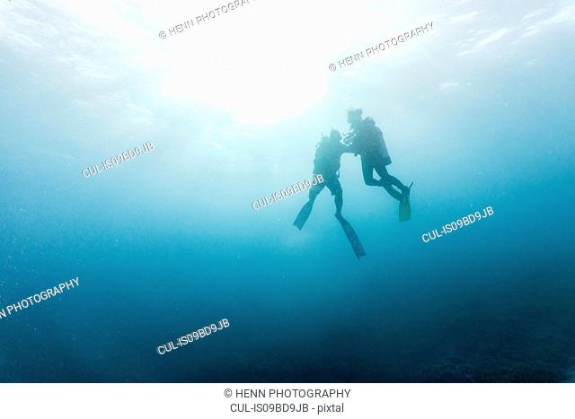 Two divers performing mandatory safety stop, underwater view, Tubbataha Reefs Natural Park, Cagayancillo, Palawan, Philippines