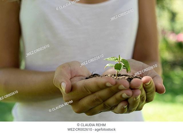 Germany, Human hands holding seedling