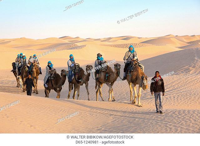 Tunisia, Sahara Desert, Douz, Great Dune, camel caravan, NR