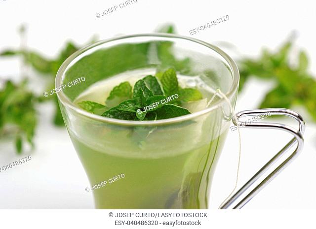 tea mint on white