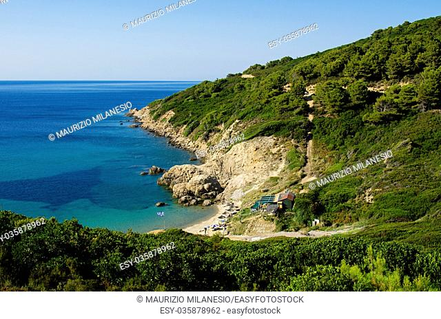 View from the top of the beach of Krifi Ammos on the island of Skiathos Greece, the sea is green and turquoise surrounded by rich vegetation