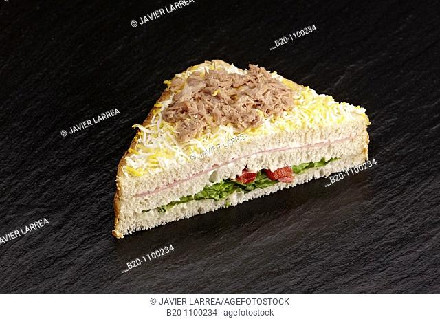 Vegetal sandwich with tuna, grated egg, cheese and ham, Barakaldo, Bizkaia, Basque Country, Spain