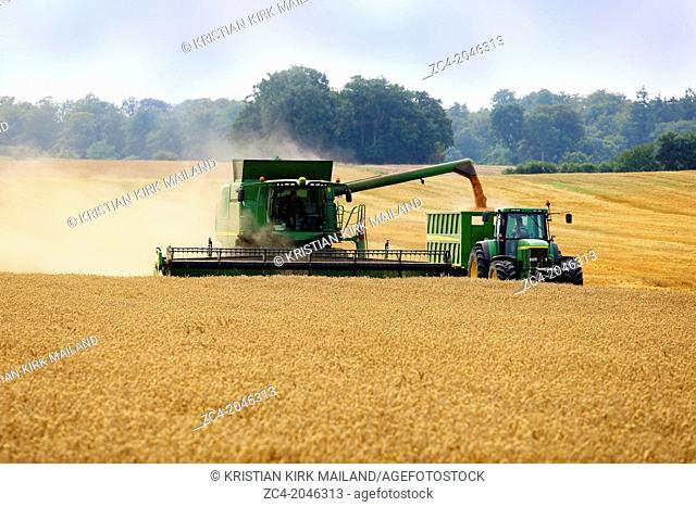Seasonal: Harvester unloading to a tractor. Denmark. Scandinavia