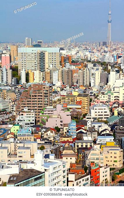 Tokyo, Japan - aerial view of Bunkyo district. Modern city skyline. SkyTree tower visible